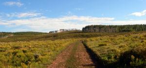 ATV Trails in Meeker, Colorado